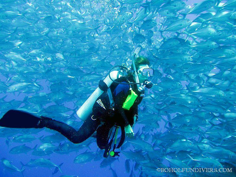 balicasag-island-diver-and-jacks